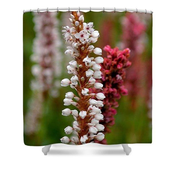 White Stalk Flower Shower Curtain