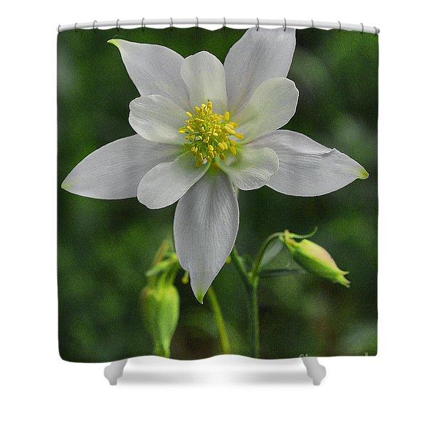 Shower Curtain featuring the digital art White Star Flower by Mae Wertz