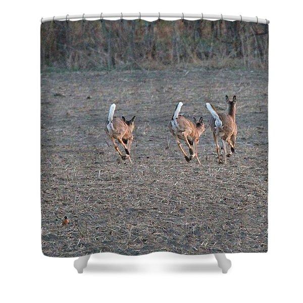 White Tailed Deer Running Shower Curtain