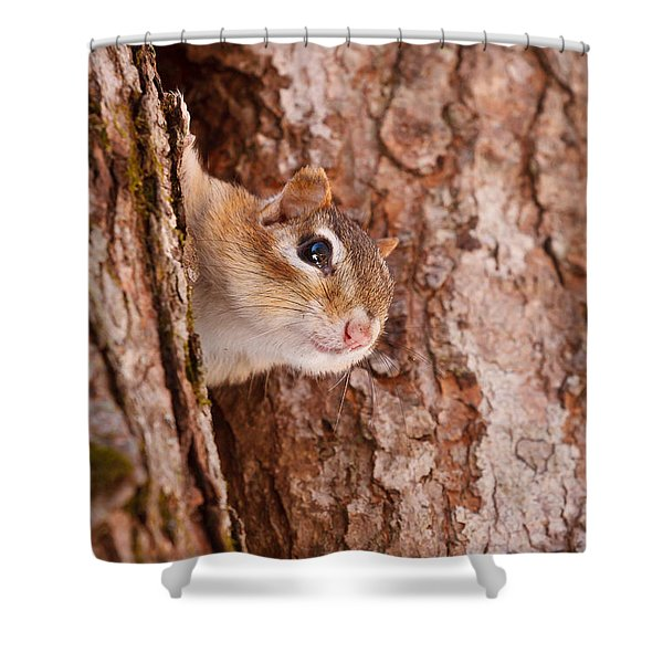 Whos That Knocking On My Door Shower Curtain