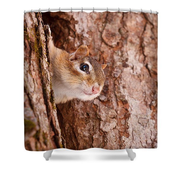 Shower Curtain featuring the photograph Whos That Knocking On My Door by Jeff Sinon