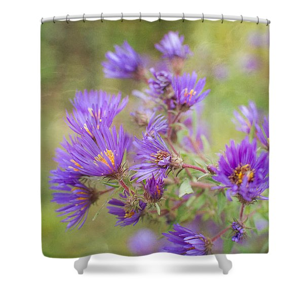Wild Flowers In The Fall Shower Curtain