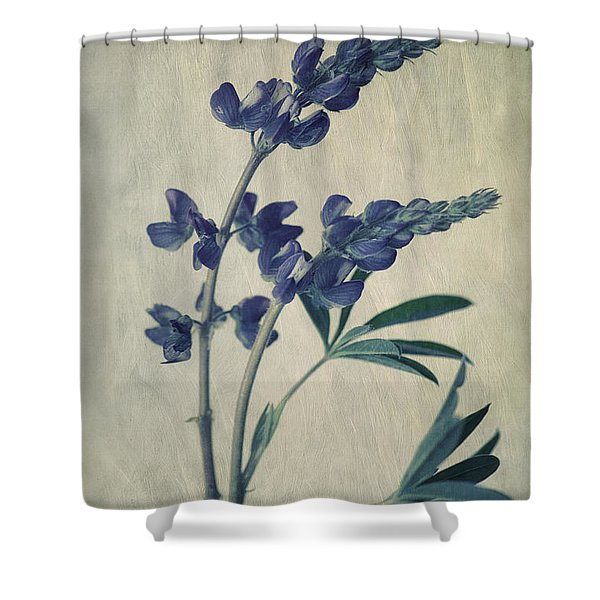 Wild Lupine Shower Curtain