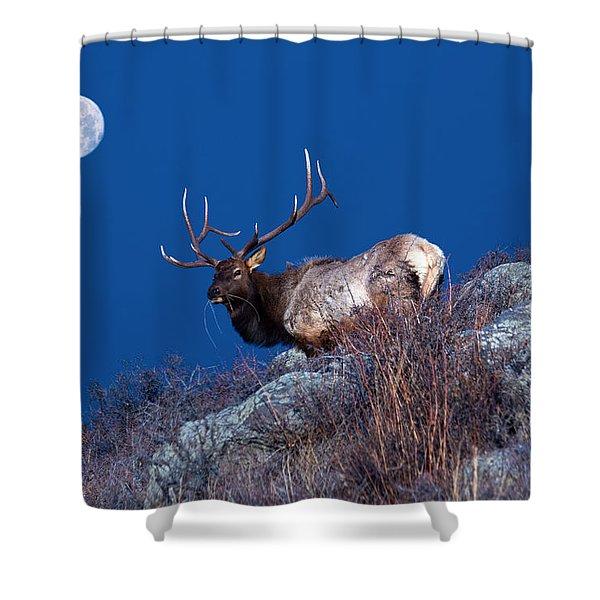 Wild Moon Shower Curtain