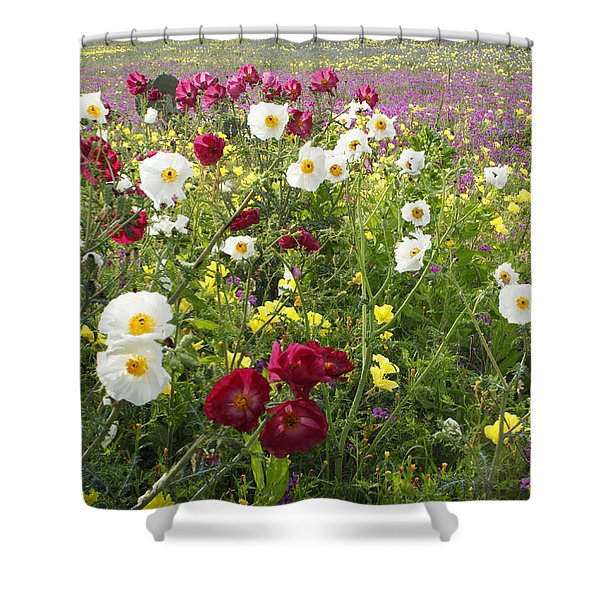Wild Poppies South Texas Shower Curtain
