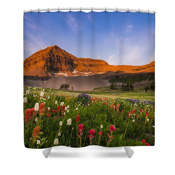 Wildflowers In Bloom Shower Curtain