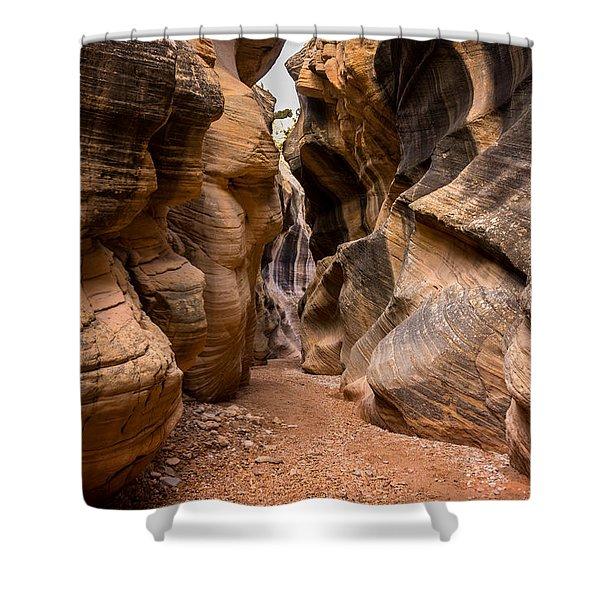 Willis Creek Slot Canyon 6 - Grand Staircase Escalante National Monument Utah Shower Curtain