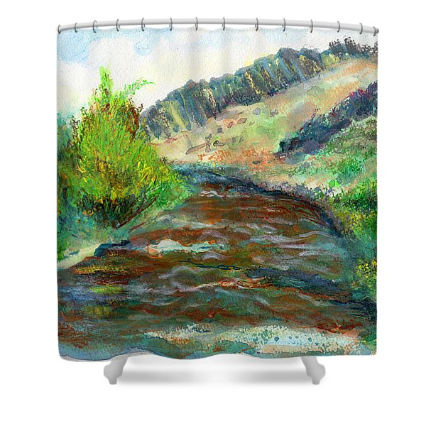 Willow Creek In Spring Shower Curtain