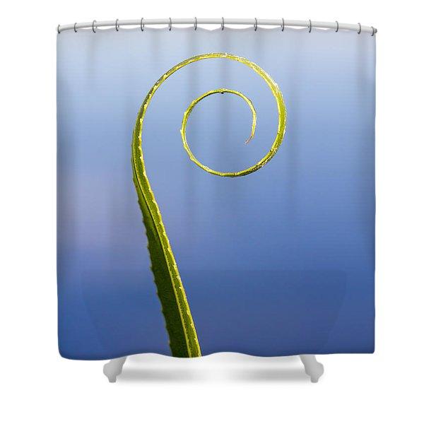 Willow Leaf Spiral Shower Curtain