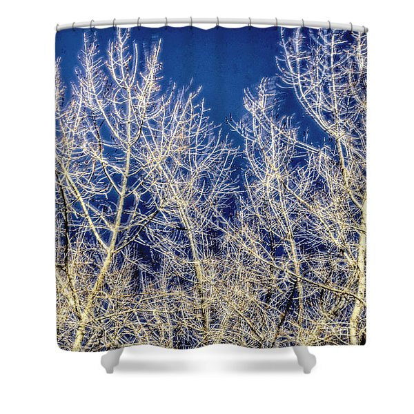 Windy Trees 12999 Shower Curtain