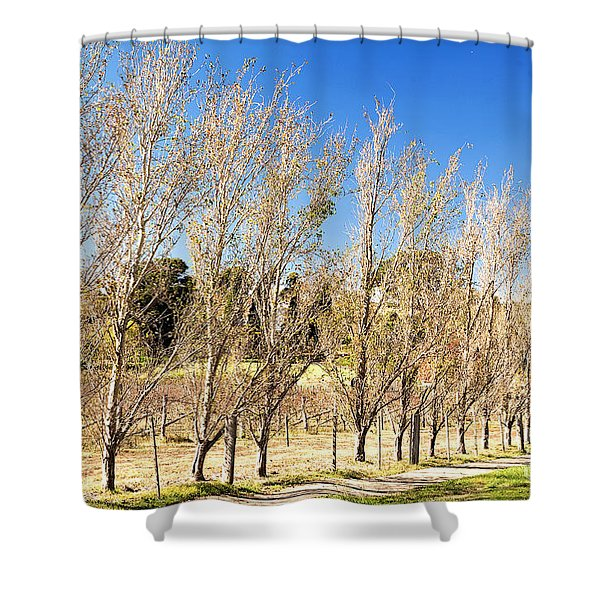 Winery Shower Curtain
