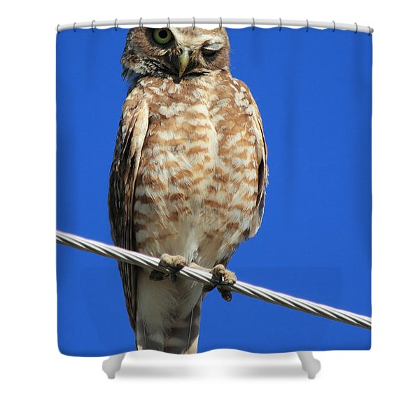 Wink Shower Curtain