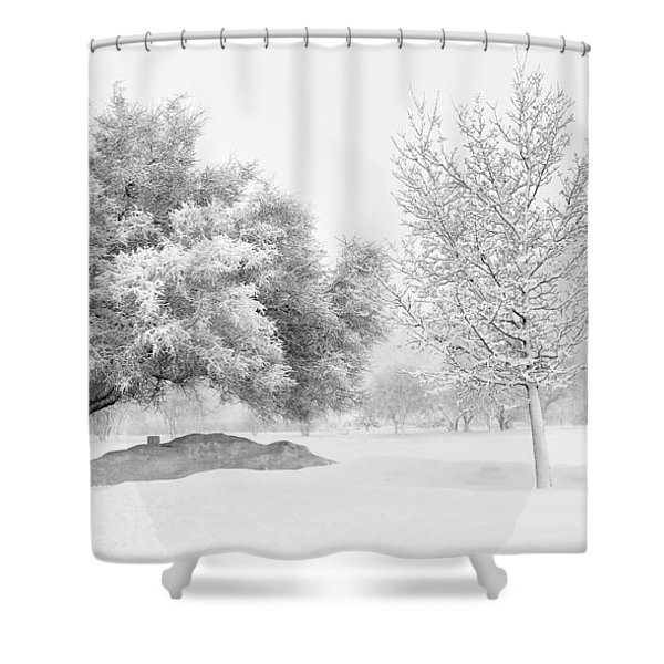 Winona Snowstorm Shower Curtain