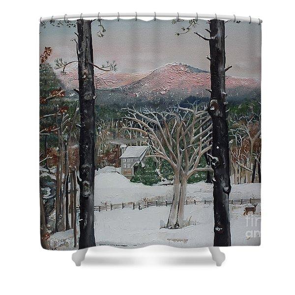 Winter - Cabin - Pink Knob Shower Curtain