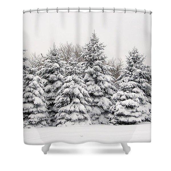 Winter Copse Shower Curtain