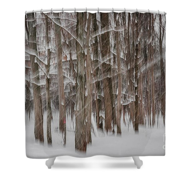Winter Forest Abstract II Shower Curtain