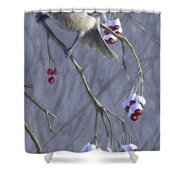 Winter Harvest 1 Chickadee Painting Shower Curtain