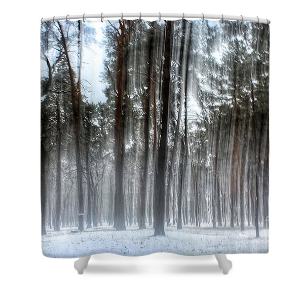 Winter Light In A Forest With Dancing Trees Shower Curtain