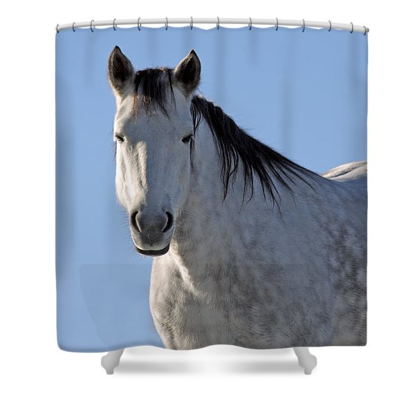 Winter Pony Shower Curtain