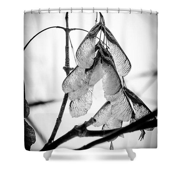 Winter Seeds Shower Curtain