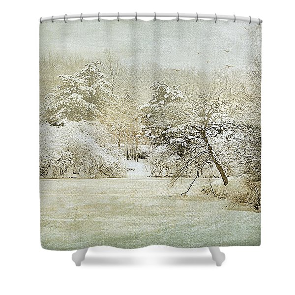 Winter Silence Shower Curtain