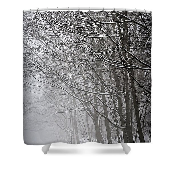 Winter Trees Along Snowy Road Shower Curtain