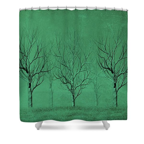 Winter Trees In The Mist Shower Curtain