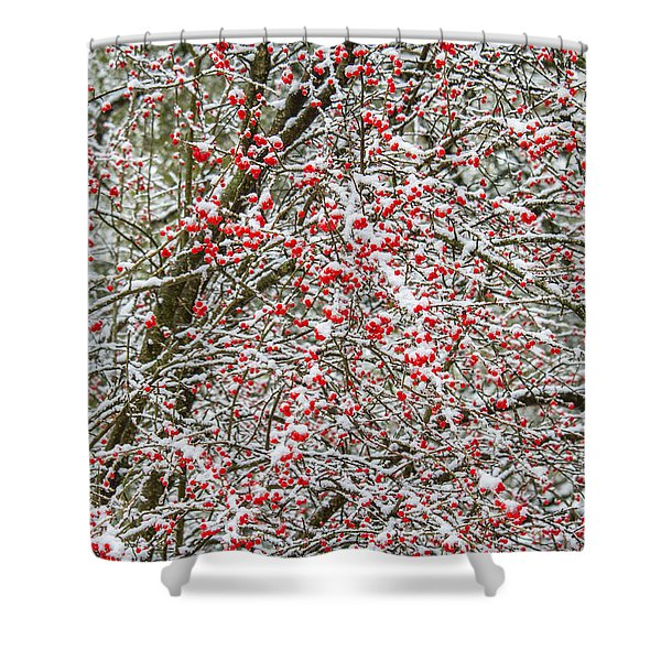 Winterberry During A Snowfall Shower Curtain