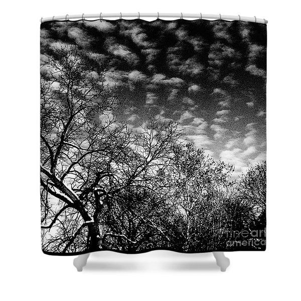 Winterfold - Monochrome Shower Curtain