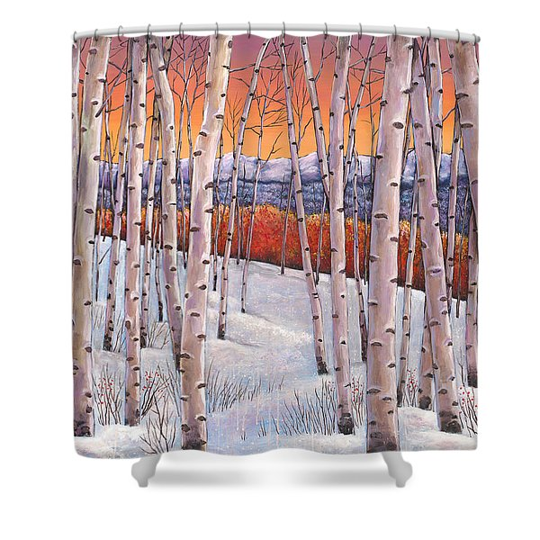 Winter's Dream Shower Curtain