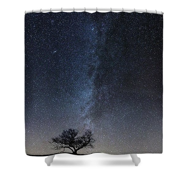 Winter's Night Shower Curtain