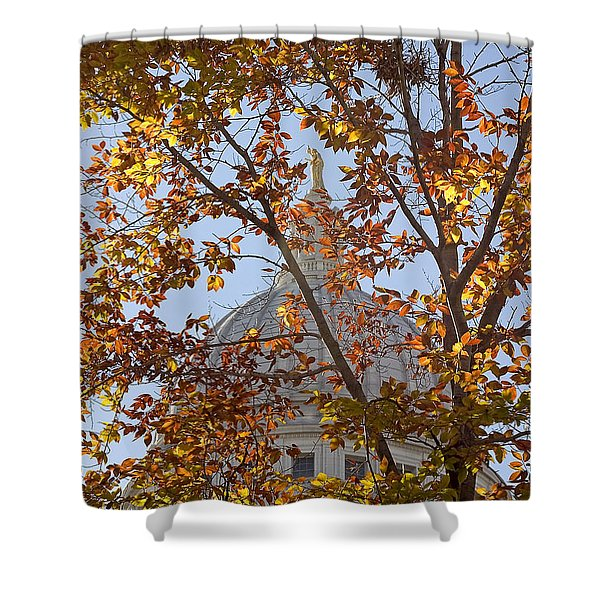 Wisconsin Capitol Shower Curtain