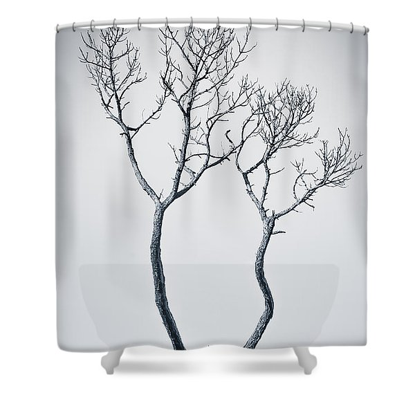 Shower Curtain featuring the photograph Wishbone Tree by Carolyn Marshall