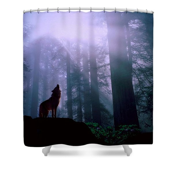 Wolf In The Woods Shower Curtain