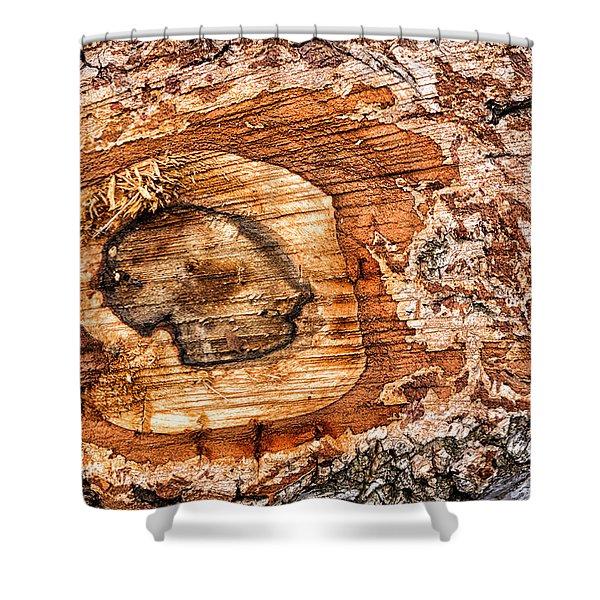 Wood Detail Shower Curtain