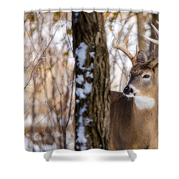 Woodland Outlaw Shower Curtain