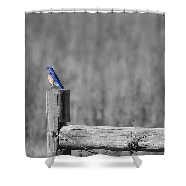 World Of Blue Shower Curtain