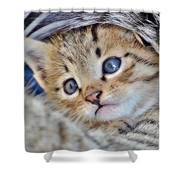 Wrapped In Mother's Love Shower Curtain
