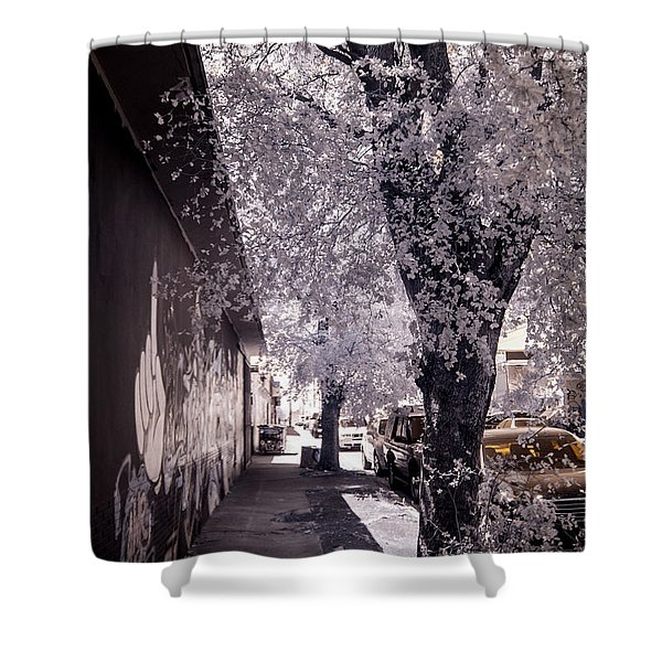 Wynwood Treet Shadow Shower Curtain