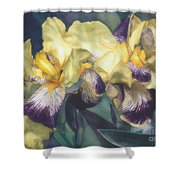 Watercolor Of A Tall Bearded Iris Painted In Yellow With Purple Veins Shower Curtain