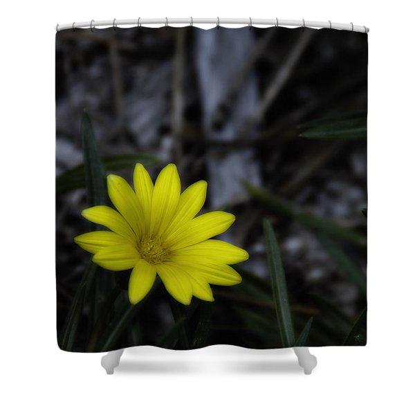 Yellow Flower Soft Focus Shower Curtain