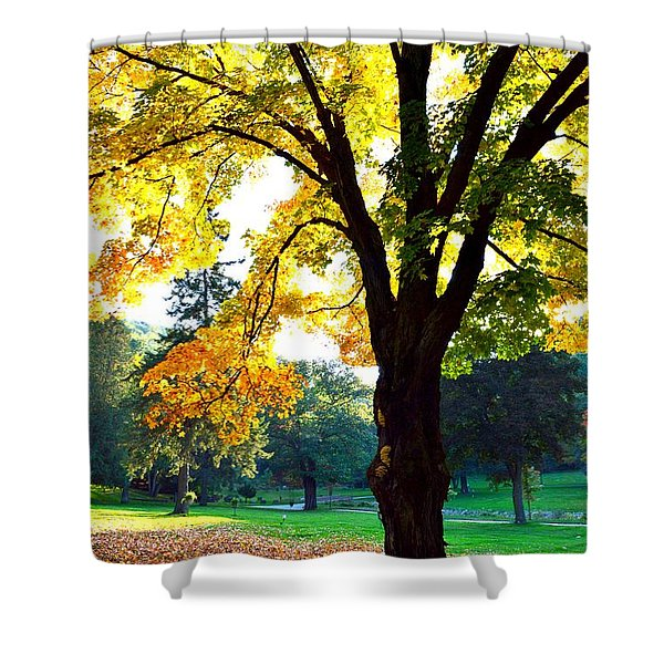 Yellow Highlights Shower Curtain