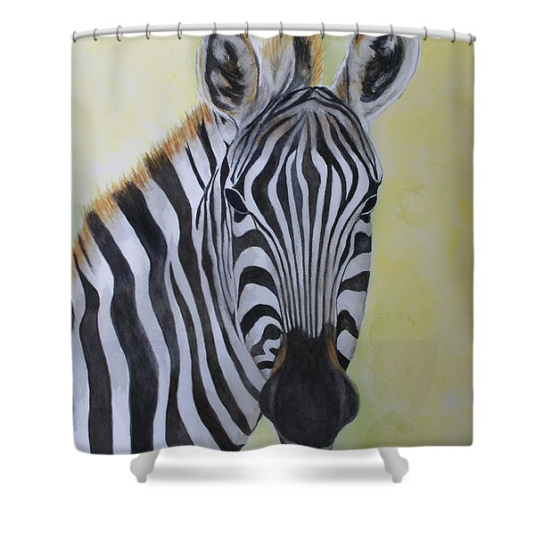 Yipes Stripes Shower Curtain
