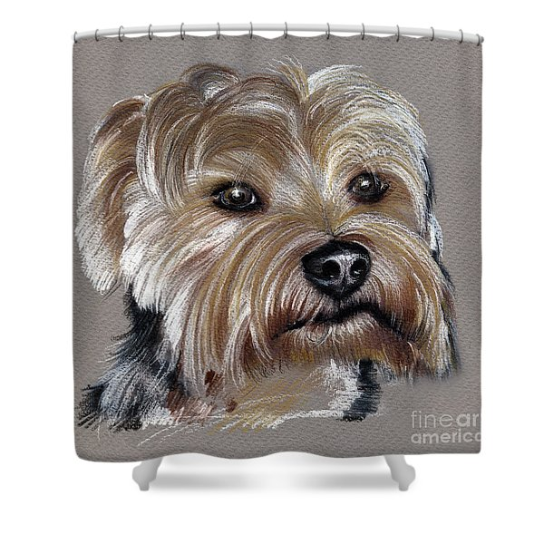 Yorkshire Terrier- Drawing Shower Curtain