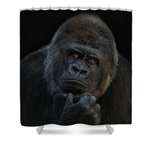 You Ain T Seen Nothing Yet Shower Curtain