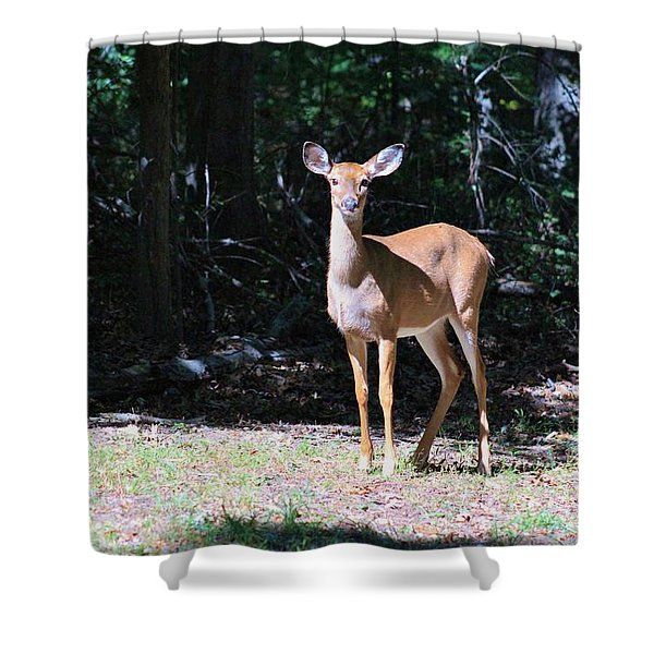 You Looking At Me Shower Curtain