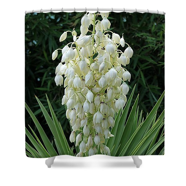 Yucca Blossoms Shower Curtain