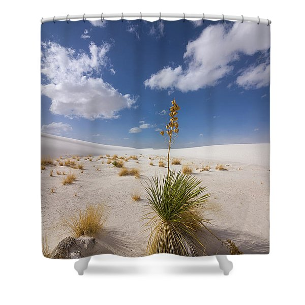 Yucca Growing On Dune In White Sands N Shower Curtain