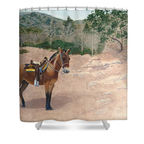 Zachary The Mule Shower Curtain