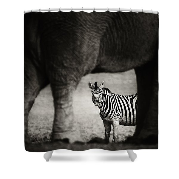 Zebra Barking Shower Curtain
